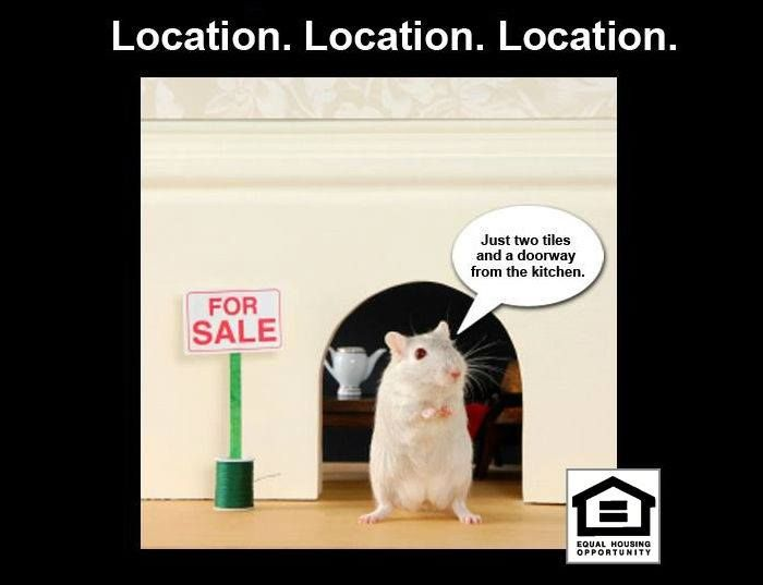 31-best-real-estate-humor-images-on-pinterest-humorous-real-estate-postcards
